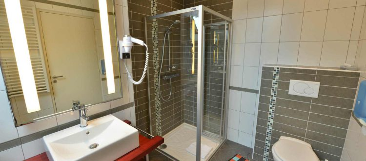 Salle de bain chambre 202 Chambre 402 à l'Hôtel relais de la Côte-d'Or à Semur-en-Auxois Bourgogne
