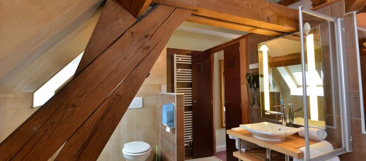 Salle de bain de la chambre 205 de l'Chambre 402 à l'Hôtel relais de la Côte-d'Or à Semur-en-Auxois Bourgogne
