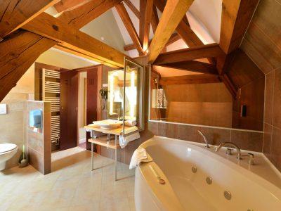 Salle de bains chambre 205 Chambre 402 à l'Hôtel relais de la Côte-d'Or à Semur-en-Auxois Bourgogne